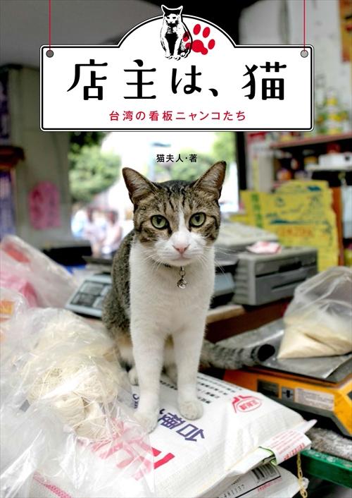 店主は、猫